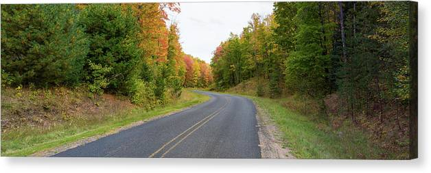 Photography Canvas Print featuring the photograph Road Passing Through A Forest, Alger by Panoramic Images