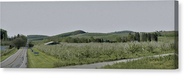 Peters Canvas Print featuring the photograph Apple Orchards In Pennsylvania by Bruce Woodruff