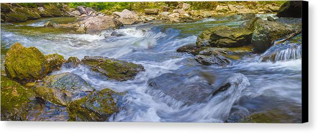 River Canvas Print featuring the photograph River Bank by Will Akers