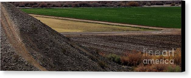 Land Canvas Print featuring the photograph The Art Of Farming by L Cecka