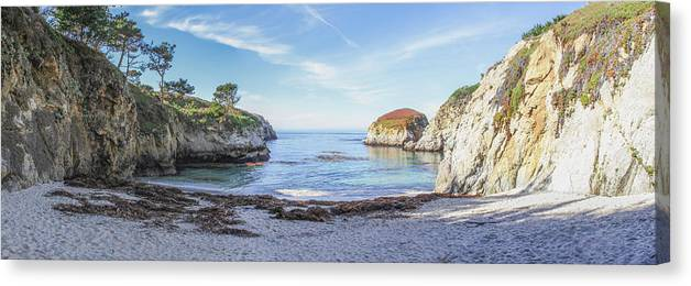 China Cove Canvas Print featuring the photograph China Cove Point Lobos by Brad Scott