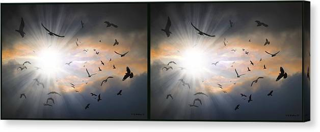 3d Canvas Print featuring the photograph The Call - The Caw - Gently Cross Your Eyes And Focus On The Middle Image by Brian Wallace