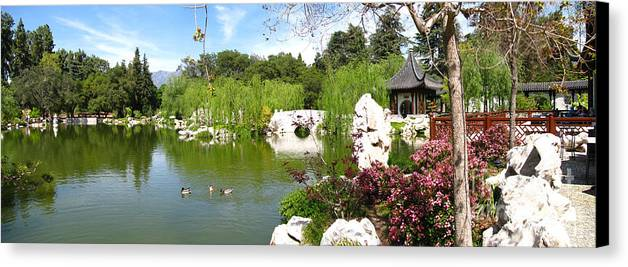 Digital Canvas Print featuring the photograph Chinese Gardens by Bedros Awak