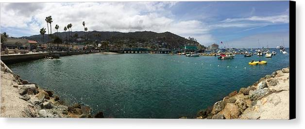 Panorama Canvas Print featuring the photograph Catalina Bay by Joshua Solis