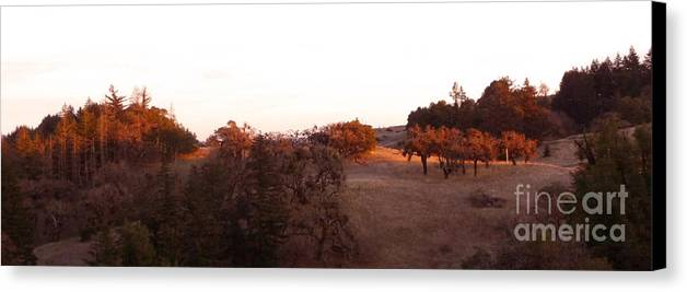 Orange Canvas Print featuring the photograph Autumn Light by JoAnn SkyWatcher