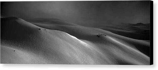 Snow Canvas Print featuring the photograph Snowscape by Alasdair Turner