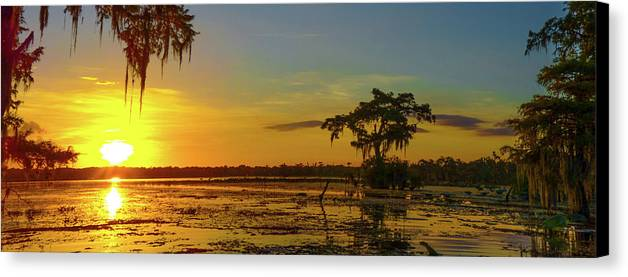 Orcinus Fotograffy Canvas Print featuring the photograph Home Home On The Swamp by Kimo Fernandez
