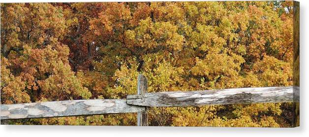Galena Fall Canvas Print featuring the photograph Galena #19 by Todd Sherlock