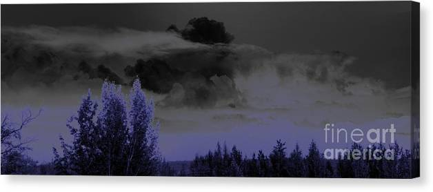 Abstract Canvas Print featuring the photograph Purple Haze by Ron Bissett