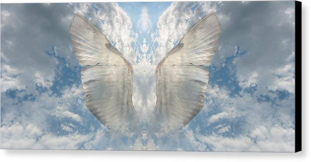 Sky Canvas Print featuring the photograph Wings 1 by Bob Bennett