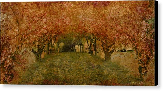 Garden Tree Trees Flowers Canvas Print featuring the photograph In My Garden by Inesa Kayuta