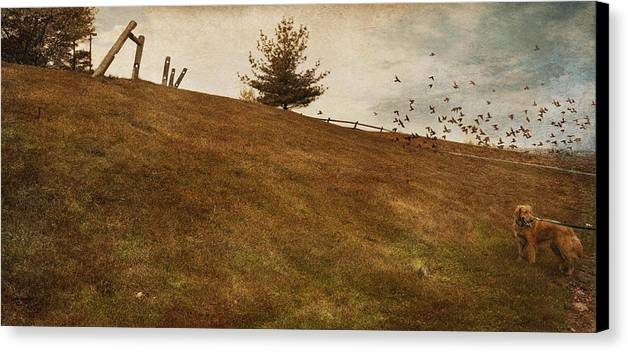 Birds Canvas Print featuring the photograph Walk by Inesa Kayuta