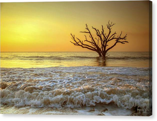 Gold Coast by Serge Skiba
