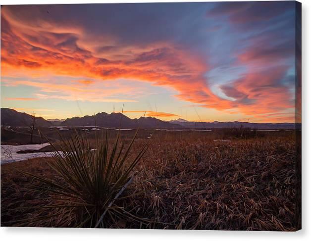 Desert Sunset by Brian Lynch