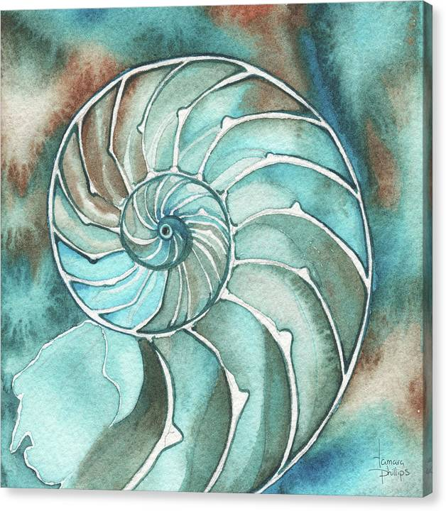 Nautilus Canvas Print featuring the painting Square Nautilus by Tamara Phillips