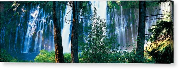 Waterfall In A Forest Mcarthur Burney Canvas Print Canvas Art By Panoramic Images