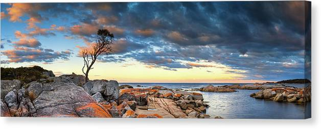 Scenics Canvas Print featuring the photograph Binalong Bay by Bruce Hood