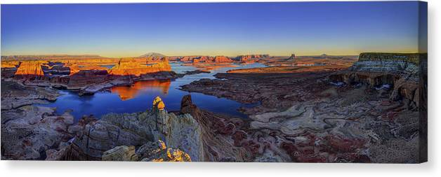 Nature Canvas Print featuring the photograph Surreal Alstrom by Chad Dutson