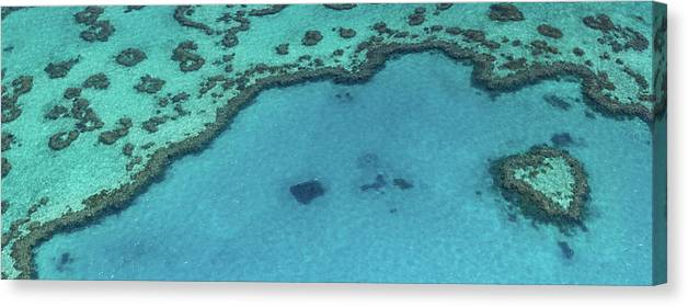 Panoramic Canvas Print featuring the photograph Heart Reef, Great Barrier Reef by Francesco Riccardo Iacomino