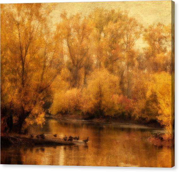 Limited Time Promotion: Gold On The Pond Stretched Canvas Print