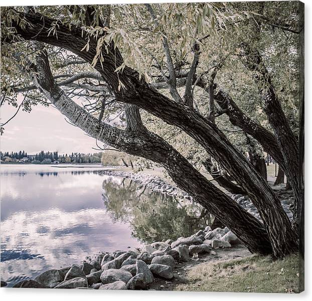 Limited Time Promotion: Leaning Into Henderson Stretched Canvas Print by Dwayne Schnell