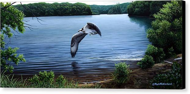 Osprey Canvas Print featuring the painting Osprey Over Clear Lake by Mark Mittlesteadt