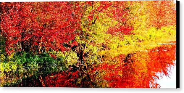 Water Reflections Canvas Print featuring the photograph Autumn Reflections by Kara Ray