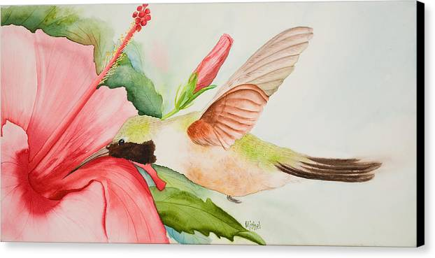 Flower Canvas Print featuring the painting Hummin by Mishel Vanderten
