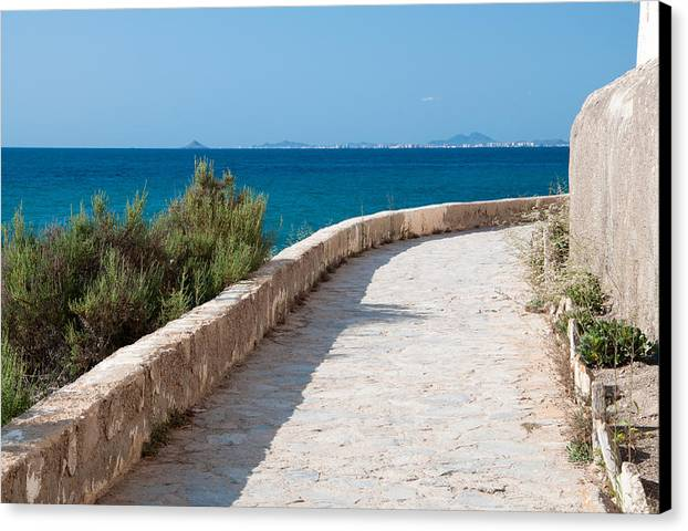 Ocean Canvas Print featuring the photograph Pathway By The Sea by Ingela Christina Rahm