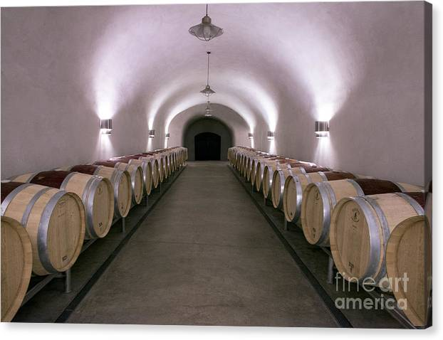 The Wine Cave by Jon Neidert