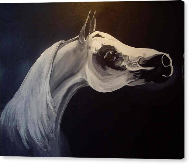 Horse Canvas Print featuring the painting Proud Arabian Stallion by Glenda Smith