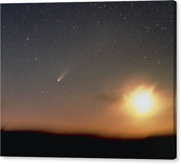 Halley's Comet Photographed From New Zealand by Barney Magrath