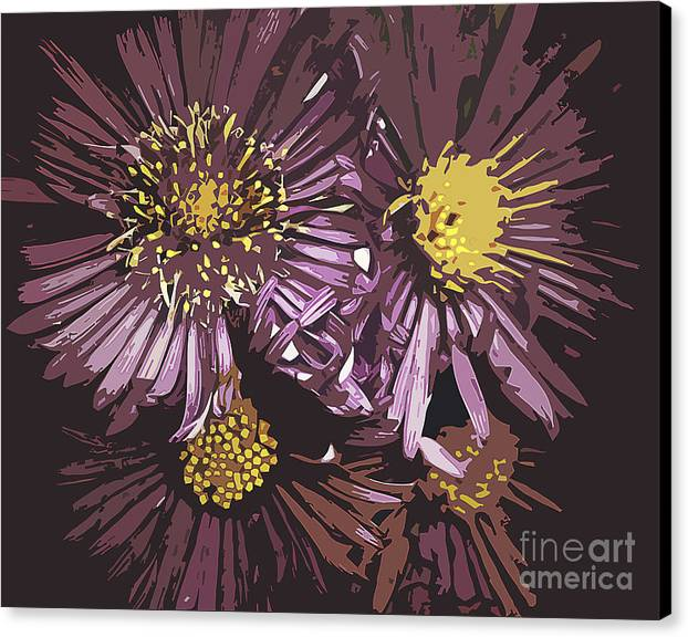 Flowers Canvas Print featuring the photograph Abstract Aster Flowers by Miss Dawn