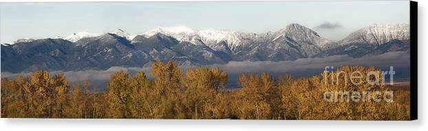 Landscapes Canvas Print featuring the photograph West Bridger Mountains by Wildlife Fine Art