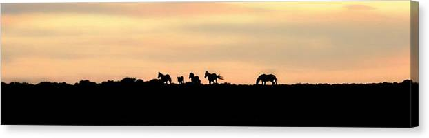Abstract Canvas Print featuring the photograph Off Into The Sunset by Donna Duckworth