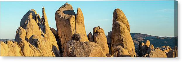 Photography Canvas Print featuring the photograph Boulders In A Desert, Joshua Tree by Panoramic Images