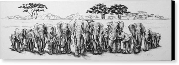Elephants Canvas Print featuring the drawing Following The Matriarch by Ann Beeching