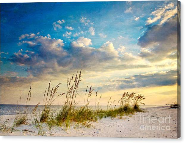 Sea Oats Sunset by Joan McCool