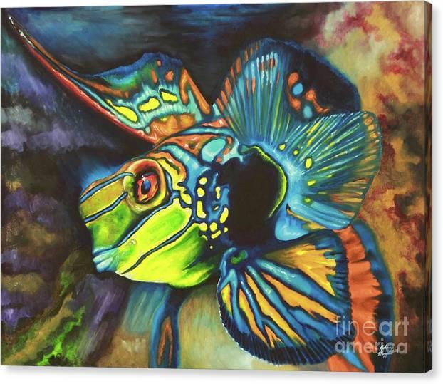 Mandarin Dragonet by Johnny Maggard