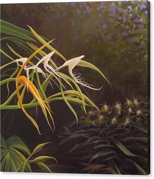 Caribbean Canvas Print featuring the painting Wild Orchids by Hunter Jay