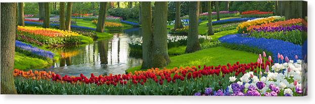 Scenics Canvas Print featuring the photograph Spring Flowers In A Park by Jacobh