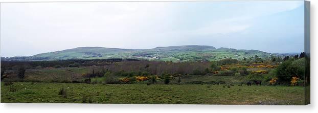 Ireland Canvas Print featuring the photograph Horses at Lough Arrow County Sligo Ireland by Teresa Mucha