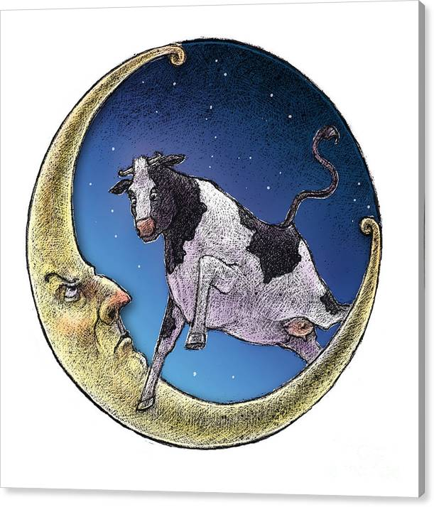 Cow Canvas Print featuring the drawing Cow And Moon by Chris Van Es