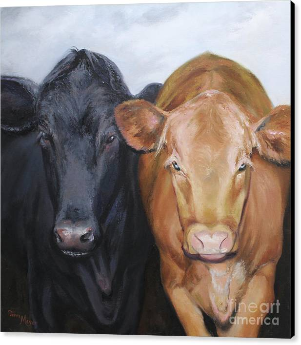 Portrait Painting Of Two Cows Canvas Print featuring the painting Girlfriends by Terri Meyer