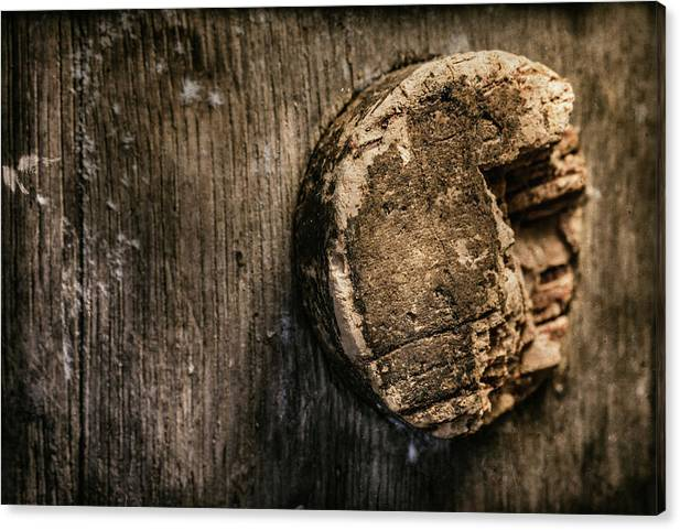 Antique Wine Barrel Cork by Tom Mc Nemar