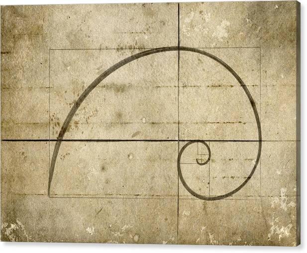 Logarithmic Spiral by Brett Pfister