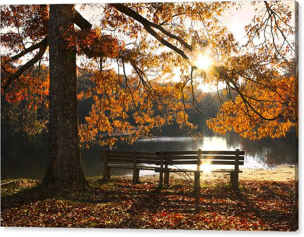 Limited Time Promotion: Autumn Beauty Stretched Canvas Print