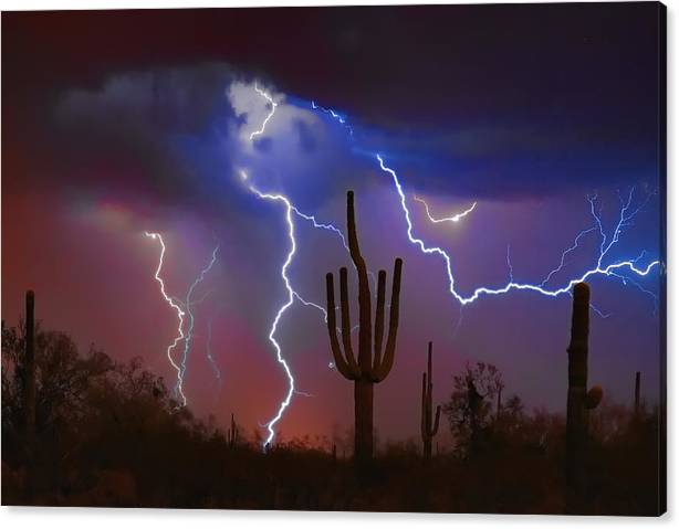 Limited Time Promotion: Saguaro Lightning Nature Fine Art Photograph Stretched Canvas Print