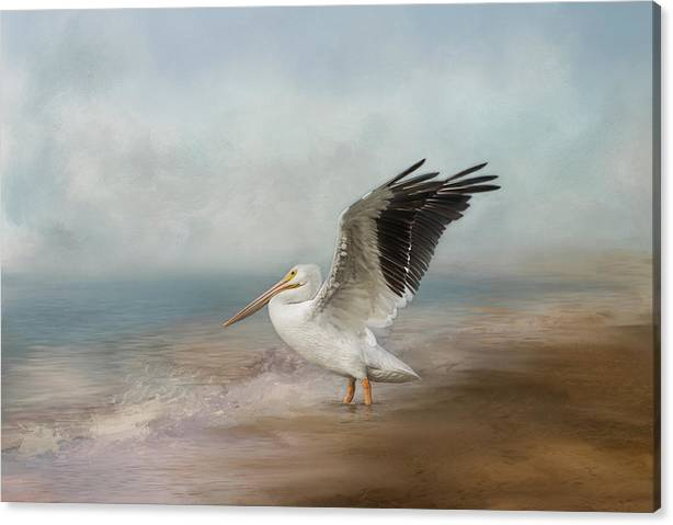 Limited Time Promotion: Amble Along The Shore Stretched Canvas Print