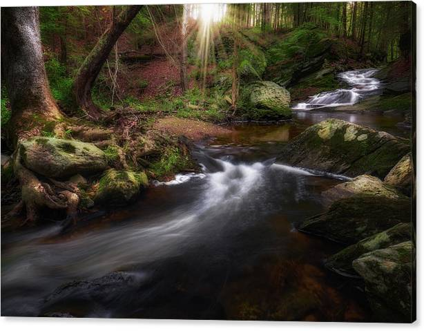 Limited Time Promotion: Ethereal Morning 2017 Stretched Canvas Print